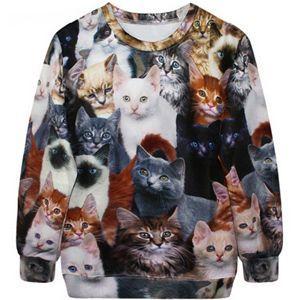 oferta sudadera gatos