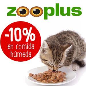 10% de descuento en comida húmeda para gatos y perros