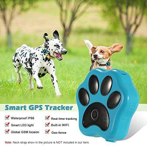 Collar localizador GPS para mascota, dispositivo para localizar a su mascota y contra perdidas, localizador Wi-Fi, Luces LED para rastrea en tiempo real con aplicación gratuita para iPhone y Android