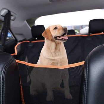 Protector asientos traseros coche Dadypet por 22,43€