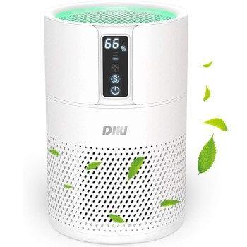 Purificador de aire Diki