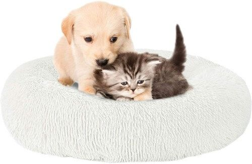 Cozywind cama para perros