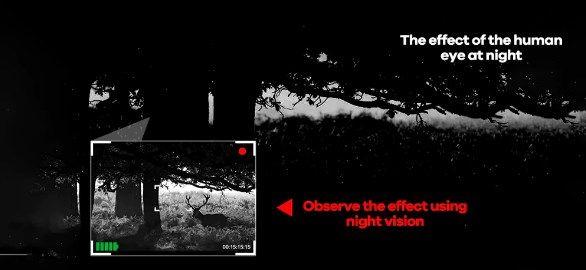 Comprar Dispositivo de visión nocturna infrarroja HD barata