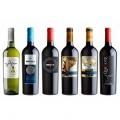 Pack de 6 botellas de vino Quixote Edición Limitada
